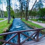 Vrelo_Bosne